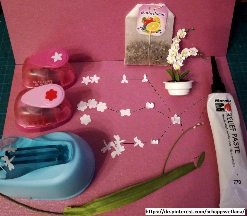 Orchidee Tutorial Miniaturas Plantas En Maceta Proyectos