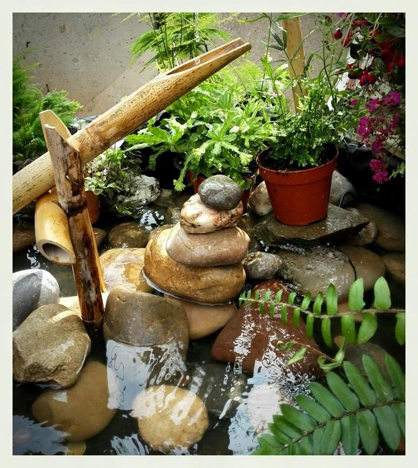 Shishi odoshi fountain made with bamboo and a 5w pump shi decor pinterest fountain - Shishi odoshi bamboo water feature ...