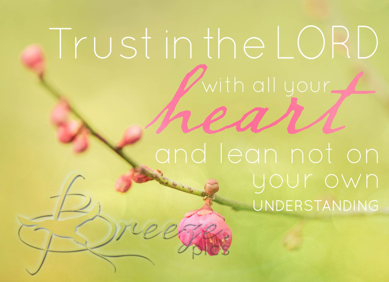 Trust in the lord with all your heart and lean not on your own