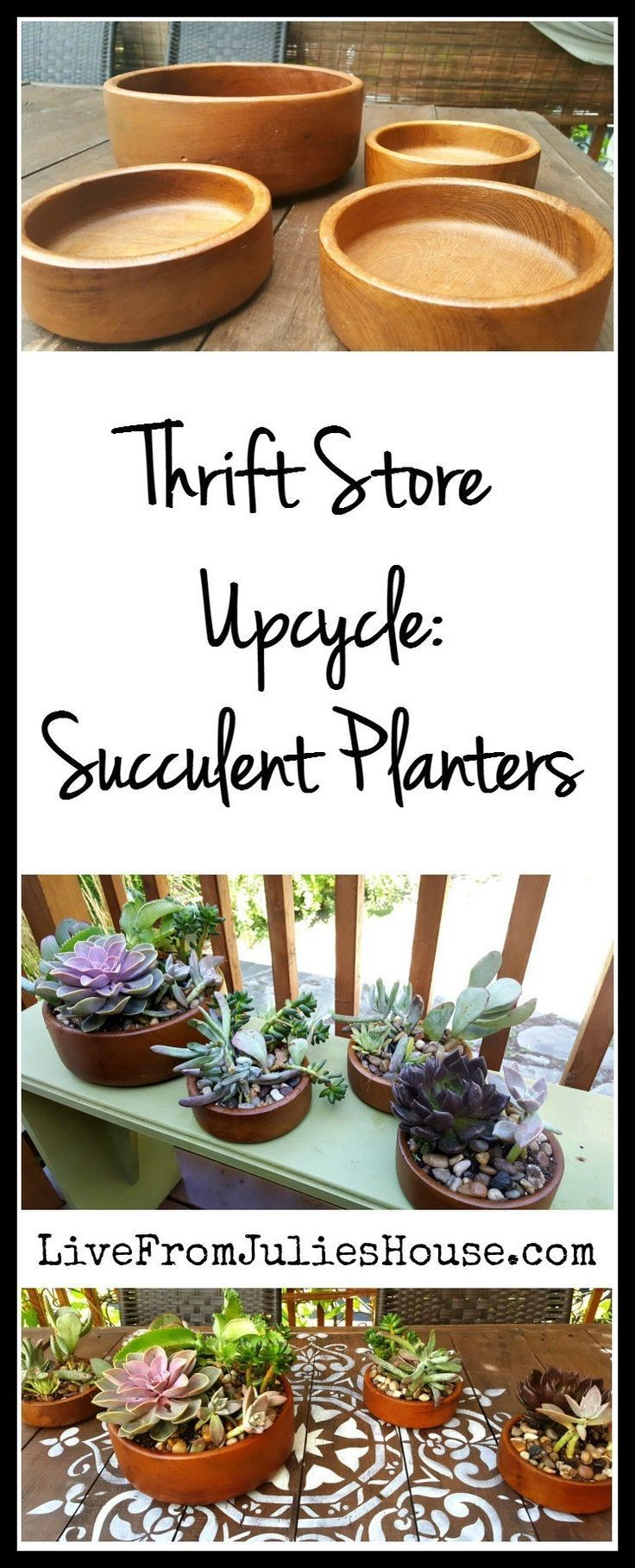 Thrift Store Upcycle: Succulent planters -  Thrift Store Upcycle: Succulent planters  #pflanzgefa # juicy #store #thrift #upcycle Check more at - #Diyfurniturehacks #Diyfurniturerustic #Planters #Store #Succulent #Thrift #thriftstoreDiyfurniture #Upcycle