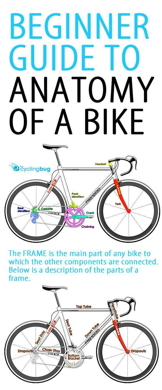 Beginner Guide To Anatomy Of A Bike Cycling Tips 3 Pinterest