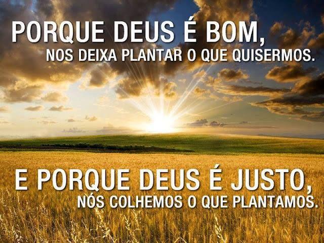 Deus é Maravilhoso Frases De Deus: Porque #Deus é Bom, Nos Deixa Plantar O Que Quisermos. E