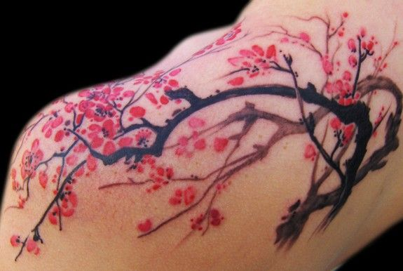 Cherry Blossom Tattoos Designs And Ideas Page 17 Cherry Blossom Tattoo Shoulder Blossom Tattoo Cherry Blossom Tattoo