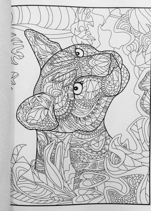 Amazon Creative Animals Coloring Book For Adults 9781530314713