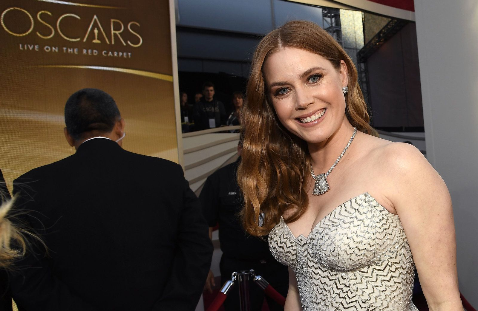 Oscars 2019 The Red Carpet In 2020 Actress Amy Adams Amy Adams