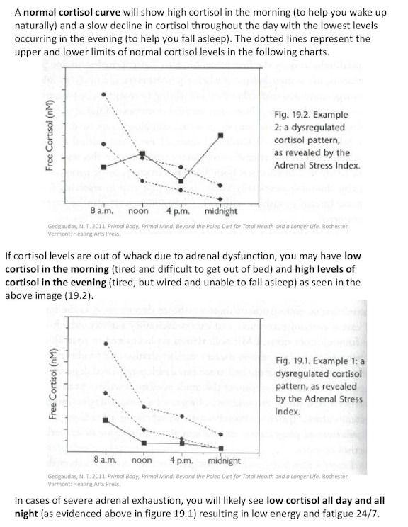 Fresh Normal Cortisol Level Chart  Chris Allen Story Arup