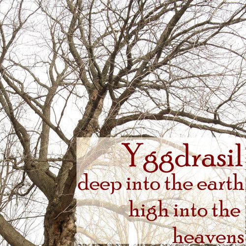 the story of Yggdrasil (Herbs of Yule) * Conversations with Chickadees