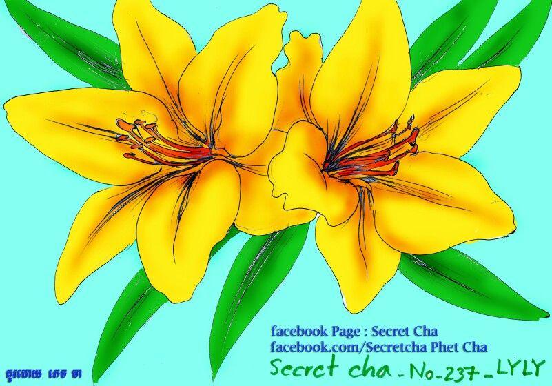 Flwoer khmer draw ទំនាក់ទំនង  Contace :  Instragram : secret.cha Twitter : Secret Cha Pinteres : Secretcha JA Facebook/Secrtecha JA Page  : Secret Cha Page  : SECRET CHA Page  : គំនូរកូនខ្មែរ Secret Cha Page  : សៀរភៅអាថ៌កំបាំង_Secret BOOK Youtube : Secret Cha
