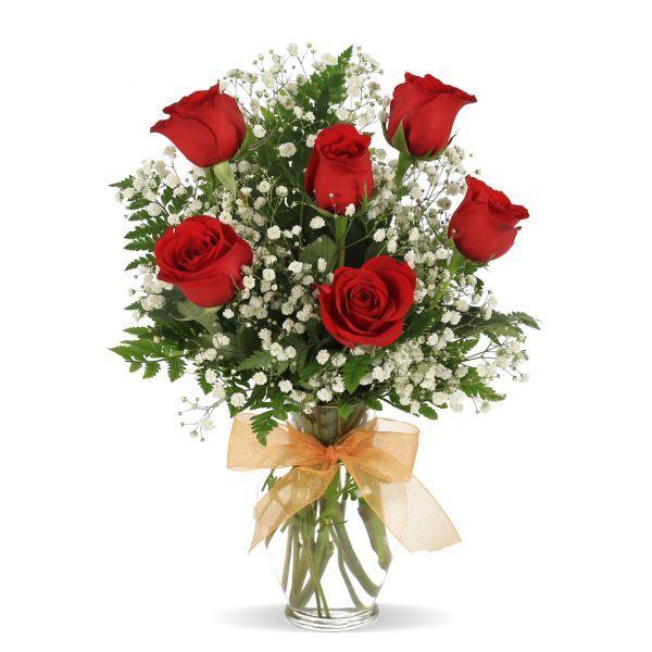 valentine's dayvalentines-two-dozen-roses - flowerama columbus, Ideas
