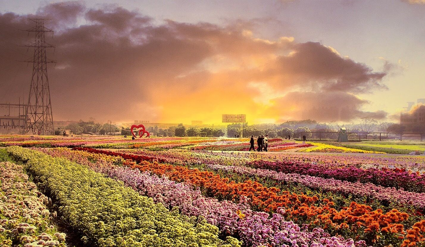 No matter which season you choose to visit Guangzhou, you can always see as many flowers as you want in the city.