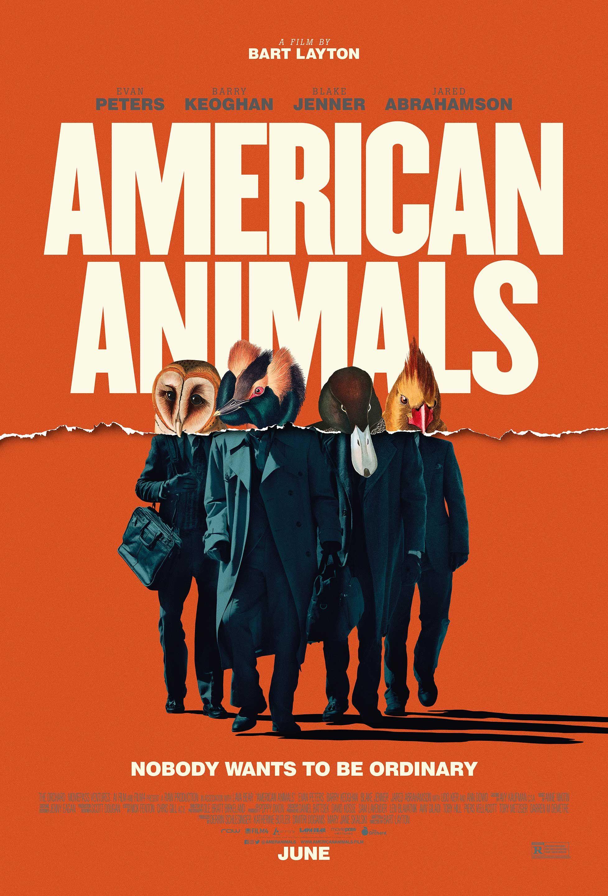 American Animals Poster HD Film, Evan peters, Sinema