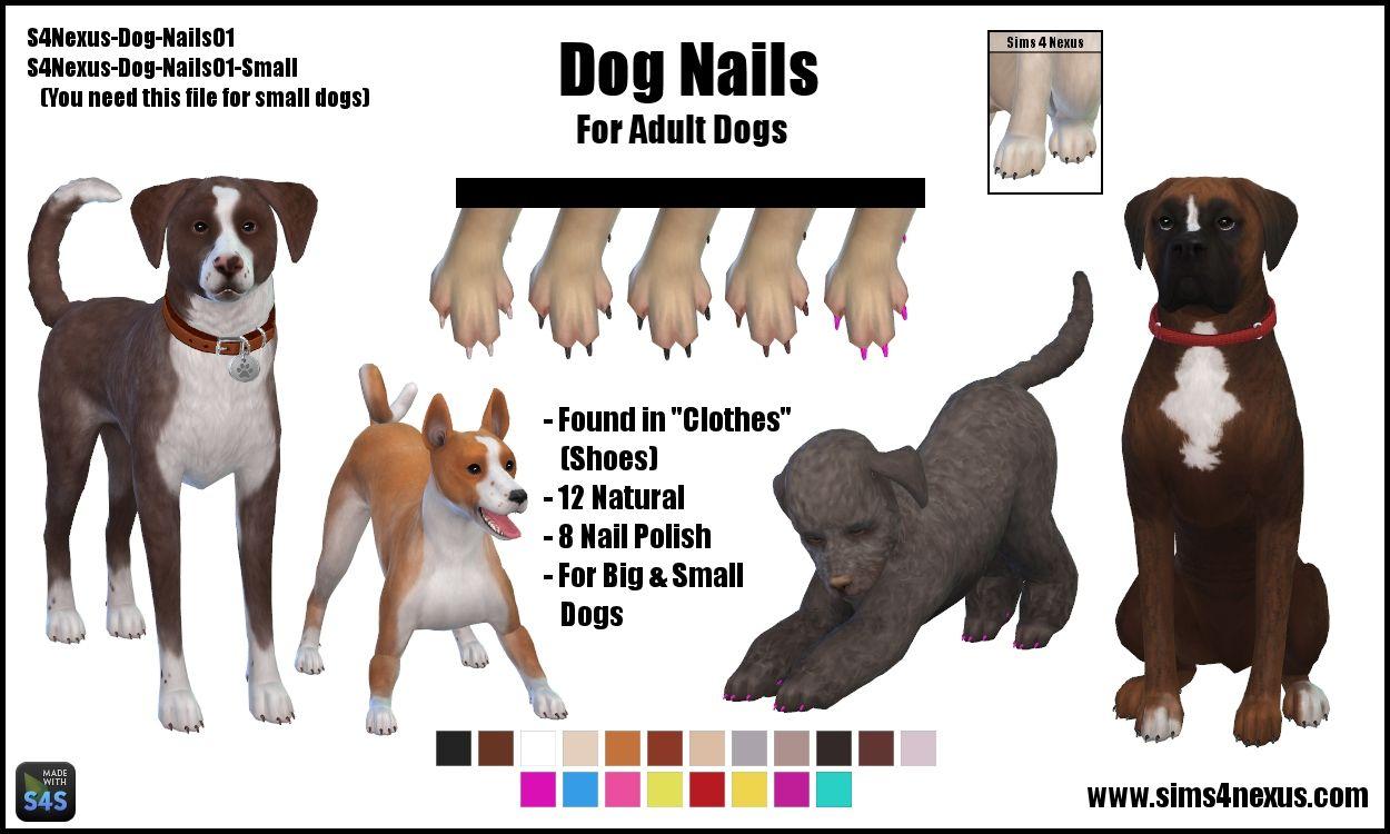 Dog Nails Original Content Sims 4 Nexus Sims 4 Pets Sims 4 Sims