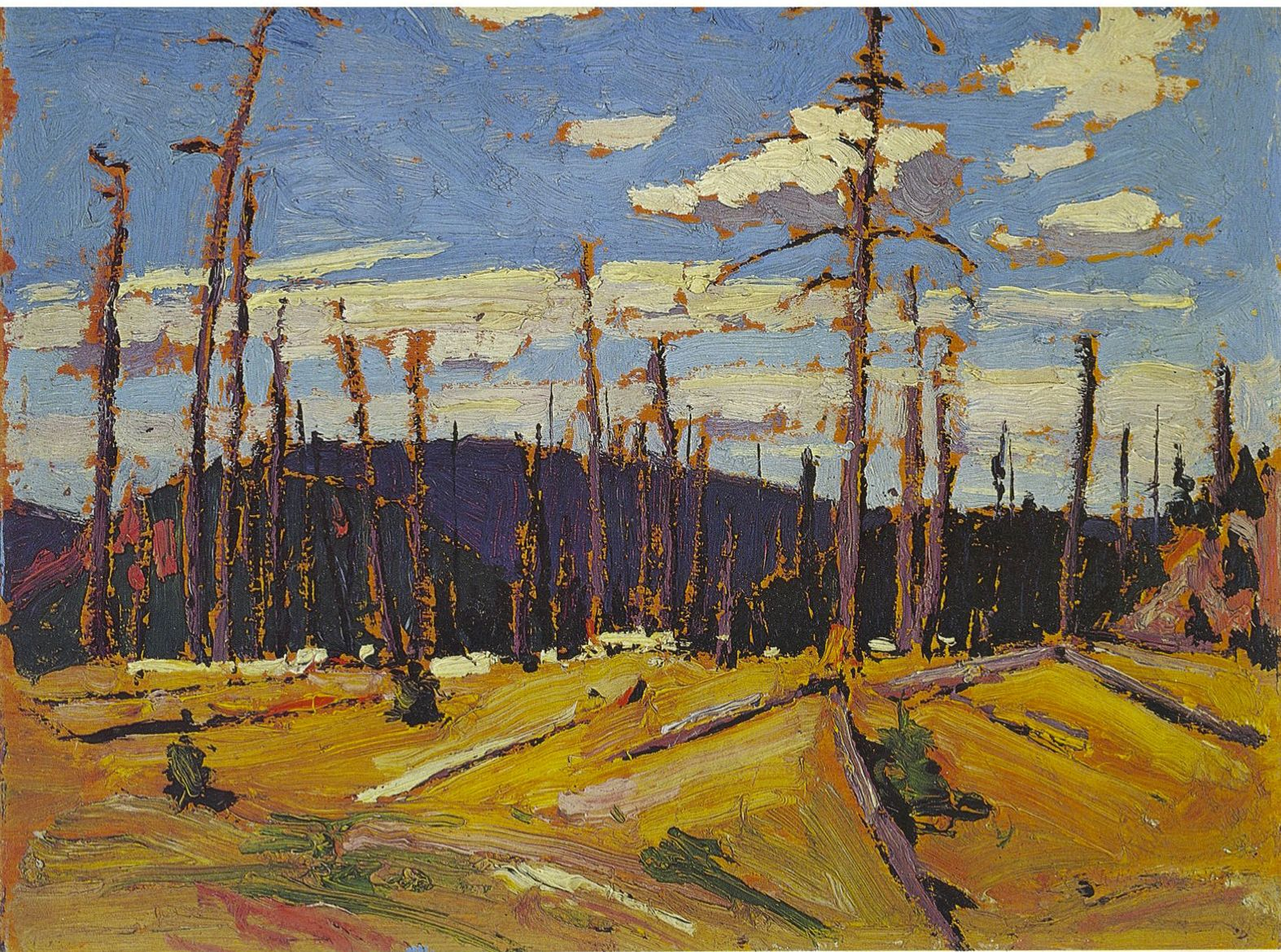 Tom Thomson Catalogue Raisonné | Burnt-Over Forest, Spring 1916 (1916.40) | Catalogue entry