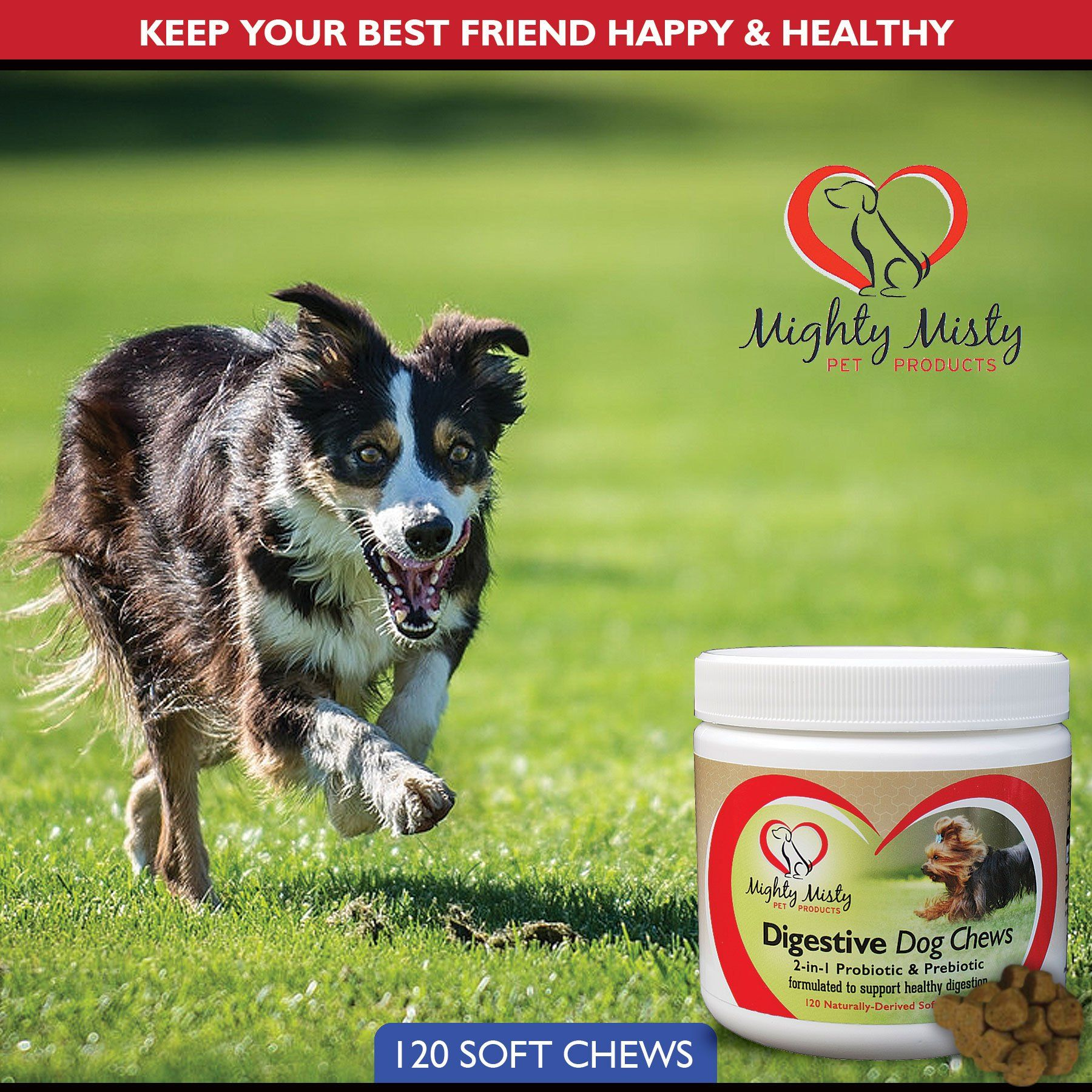 2In1 Dog Probiotic And Prebiotic Soft Chews By Mighty