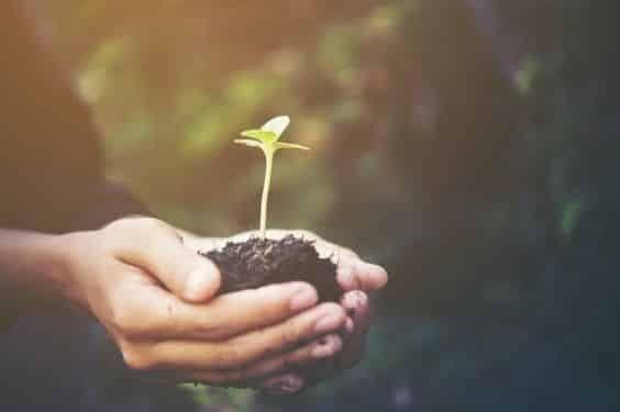 14 Maneras la Agricultura contribuye al desarrollo sostenible del planeta    Tabla de contenidos   1 Desarrollo sostenible del planeta 14 Maneras la Agricultura contribuye!   1.1 1. HarvestPlus  1.1.1 Está en los genes  1.2 2. CropLife Internacional  1.2.1 Cría mejores cultivos para ahorrar en Carbono  1.3 3. QuickFarm  1.3.1 Un intercambio de información para conseguir una climática-inteligente  ver mas...