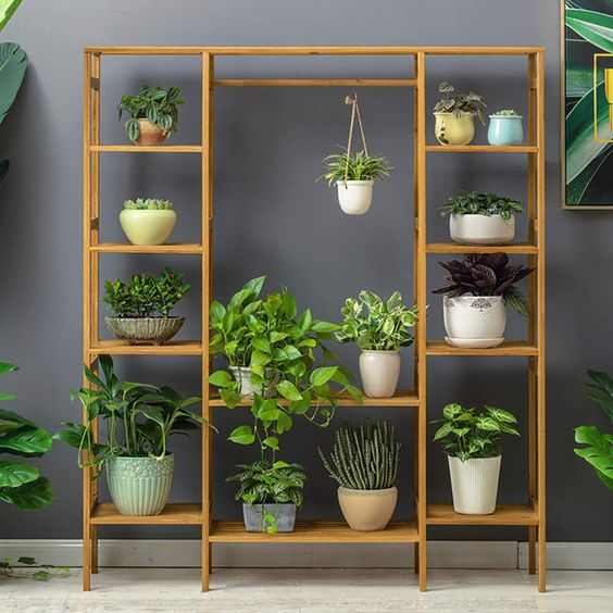 The Most Classic Green Plant Ornament Indoor Plant Shelves
