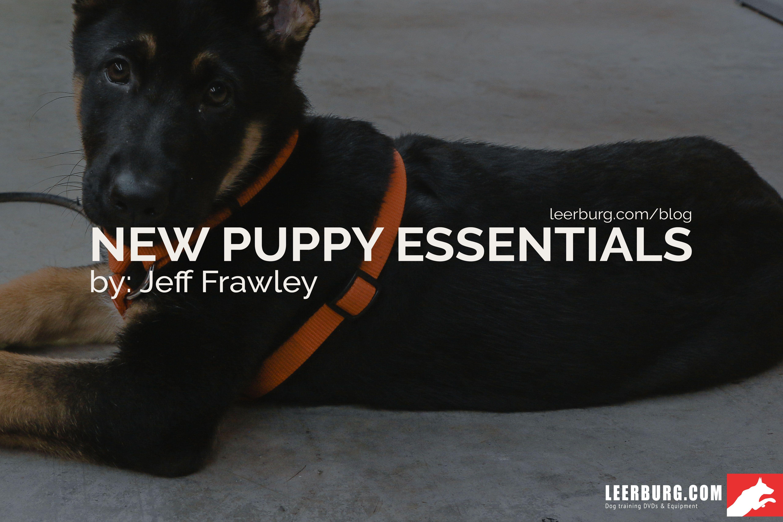 New Puppy Essentials Blog Post By Jeff Frawley Blog Dogtraining Puppy Dogs Dogsofinstagram New Puppy Puppies Dog Tshirt