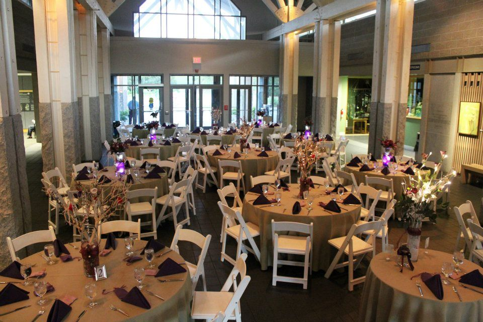 Wedding Reception At The Norfolk Botanical Gardens