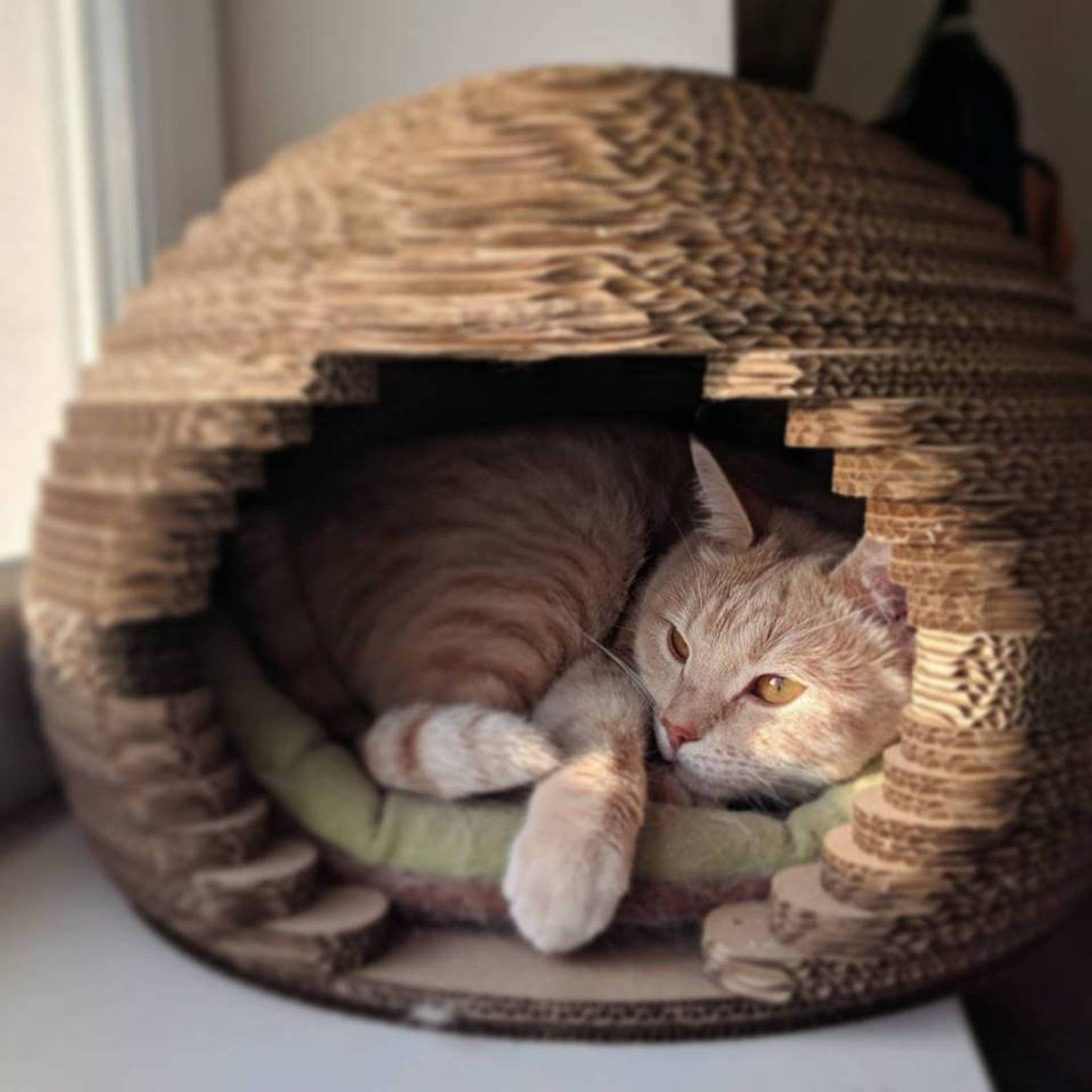 Cat House Cat House Modern Pet House Cat House Sphere Cat Etsy Cardboard Cat House Cat Bed Cat House