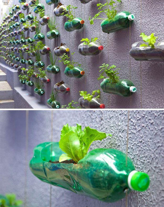 PET Bottle Hanging Garden | Garden | Reuse plastic bottles ...