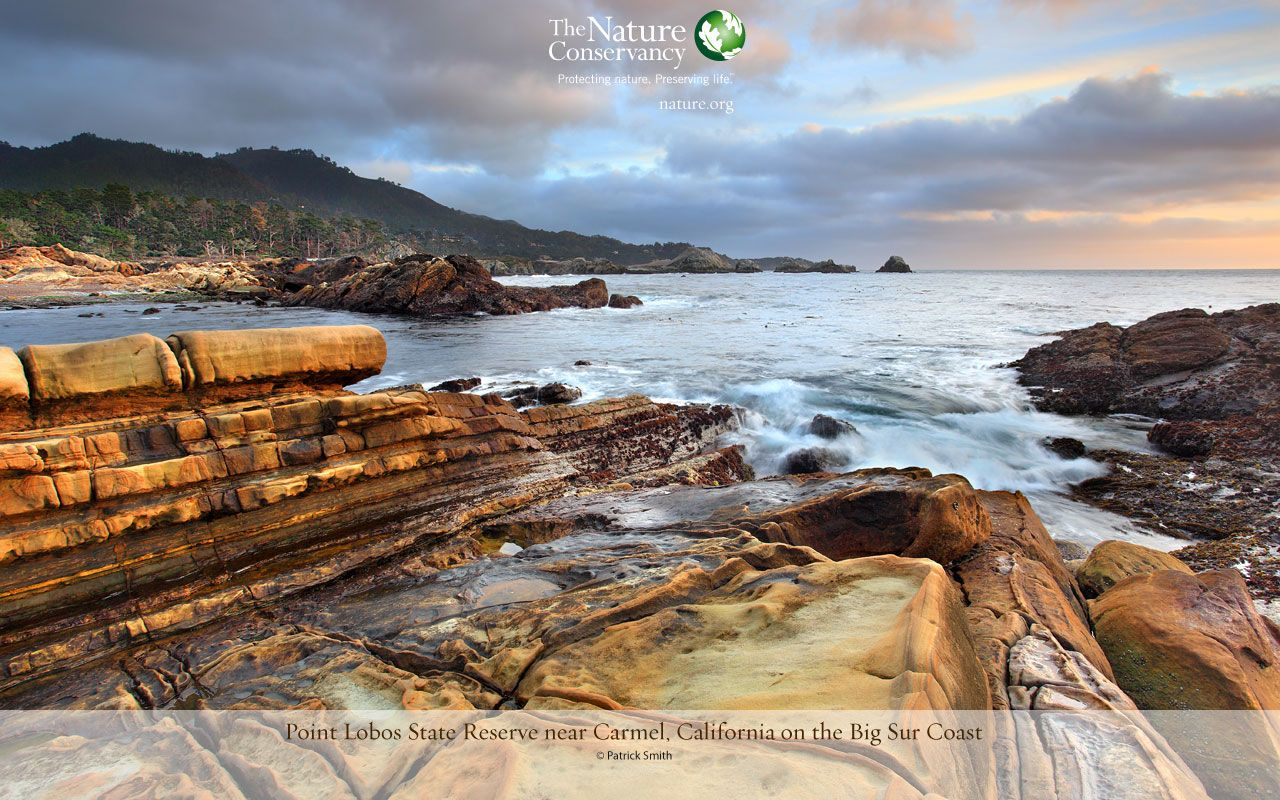 Featured Nature Image Desktop Wallpaper The Nature Conservancy Pejzazhi Naturalnyj Fotografii