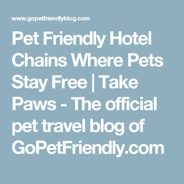 Pet Friendly Hotel Chains Where Pets Stay Free Take Paws The
