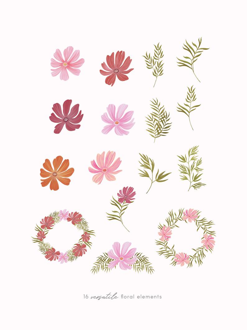 Hand Painted Cosmos Florals Clipart Pink Flower Illustration Etsy Flower Illustration Flower Clipart Clip Art