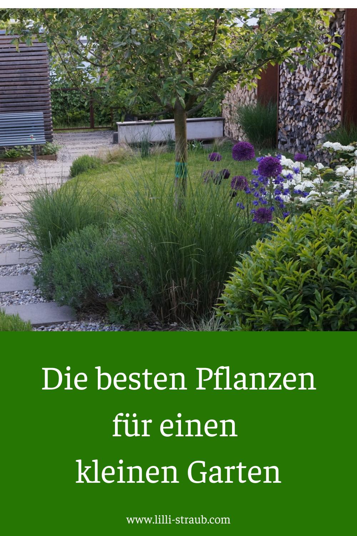 Die Besten Pflanzen Fur Einen Kleinen Garten Garten Bepflanzen Baume Garten Kleiner Garten