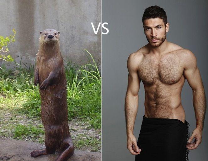 Otter gay man