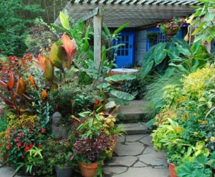 Pin By Suyapa Regina Elvir On Plantas Patios Y Jardines Hermosos Fine Gardening Beautiful Gardens Fine Gardening Magazine