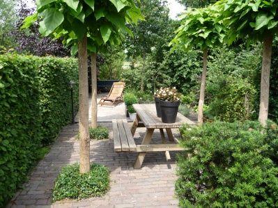 Volledig klinkerterras met vier catalpa 39 s strak maar toch for Tuinontwerp kleine tuin strak