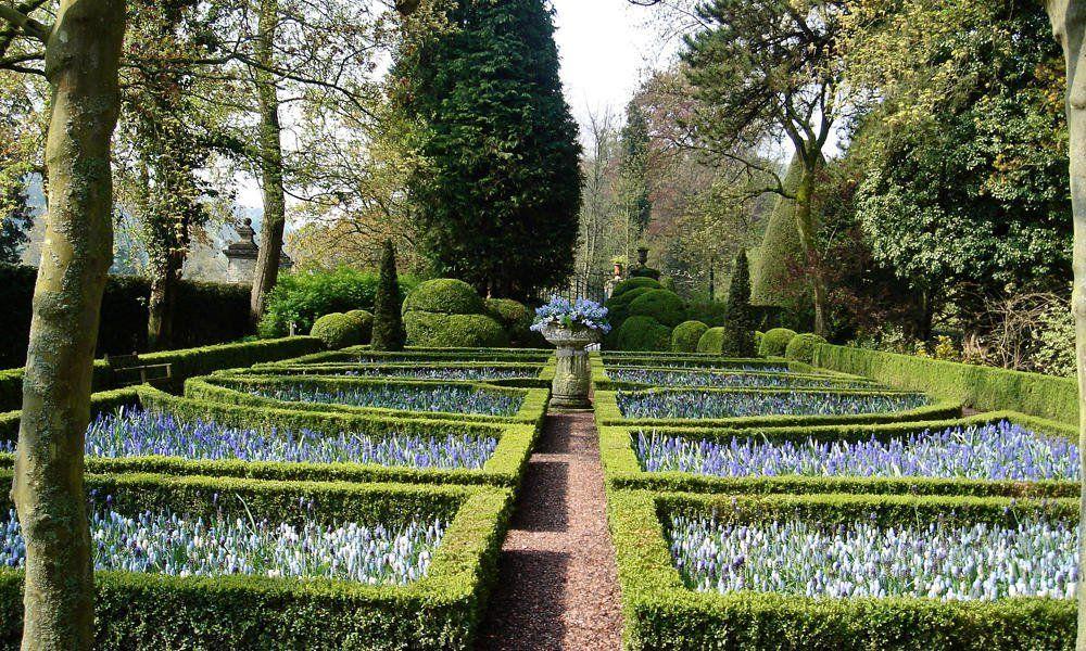 Buchsbaum im Garten Tipps für Schnitt und Pflege