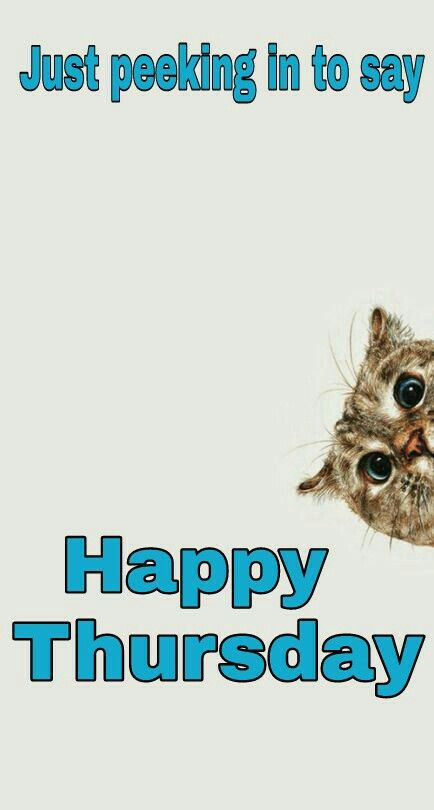 Funny Happy Thursday : funny, happy, thursday, Happy, Thursday