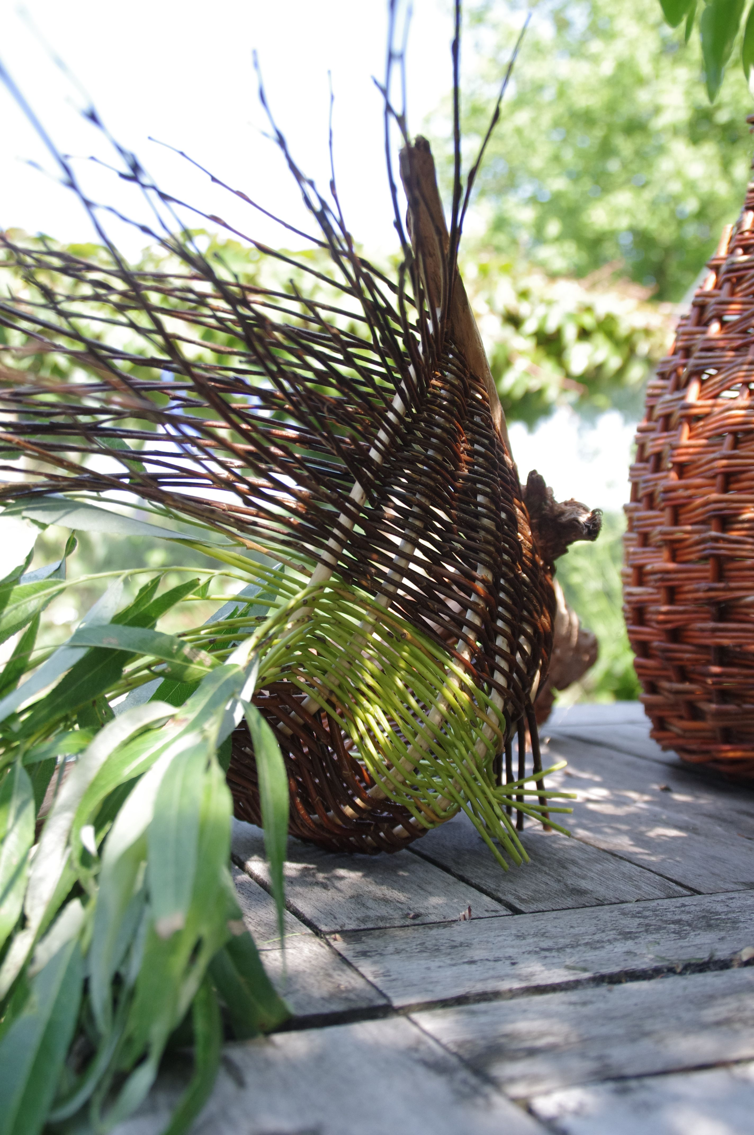 Willow basket by Anja van der Veer (With images) Fiber
