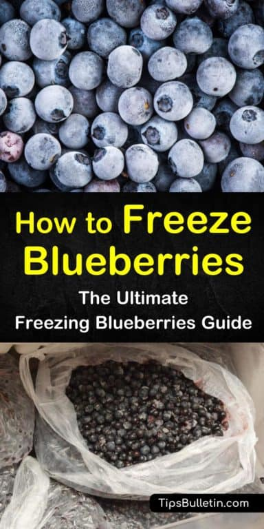 4 Incredible Ways to Freeze Blueberries Frozen