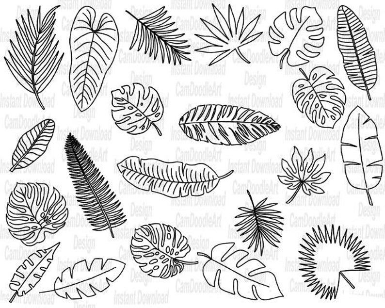 21 Doodle Tropical Leaves Vector Pack Hand Drawn Doodle Etsy Hand Drawn Leaves How To Draw Hands Typography Hand Drawn