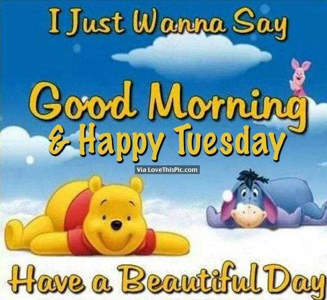 I Just Wanna Say Good Morning Happy Tuesday Have A Beautiful Day Cute Good Morning Quotes Cute Good Morning Pooh