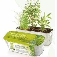 Italian Herbs Indoor Garden Kit   Herbs Of Tuscany