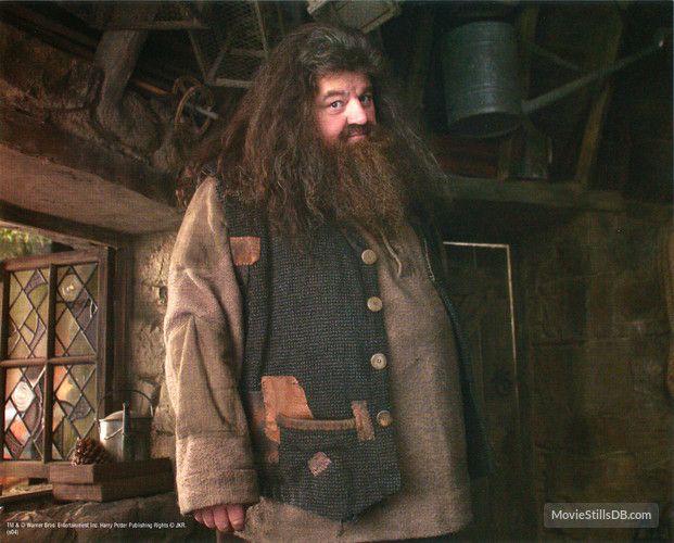 Harry Potter And The Prisoner Of Azkaban Publicity Still Of Robbie Coltrane Prisoner Of Azkaban Robbie Coltrane Rubeus Hagrid