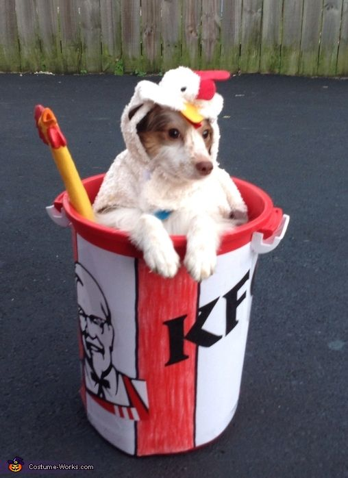 Kfc Chicken Bucket Halloween Costume Contest At Costume Works
