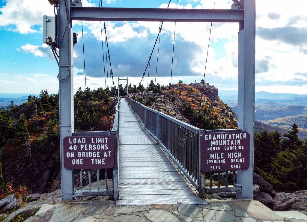 Consider, swinging bridge tree farm