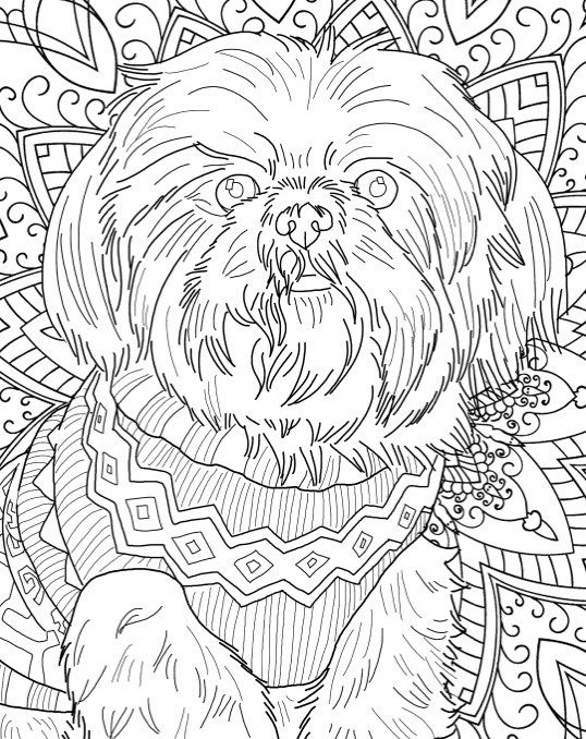 Best Coloring Books for Dog Lovers Adult coloring, Dog breeds and - best of coloring pages for adults dogs