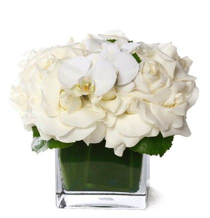 Classic White Roses - Floral Art