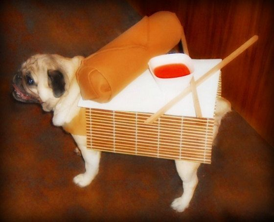 I Ll Take My Egg Roll To Go On Four Legs Dog Costume Dog