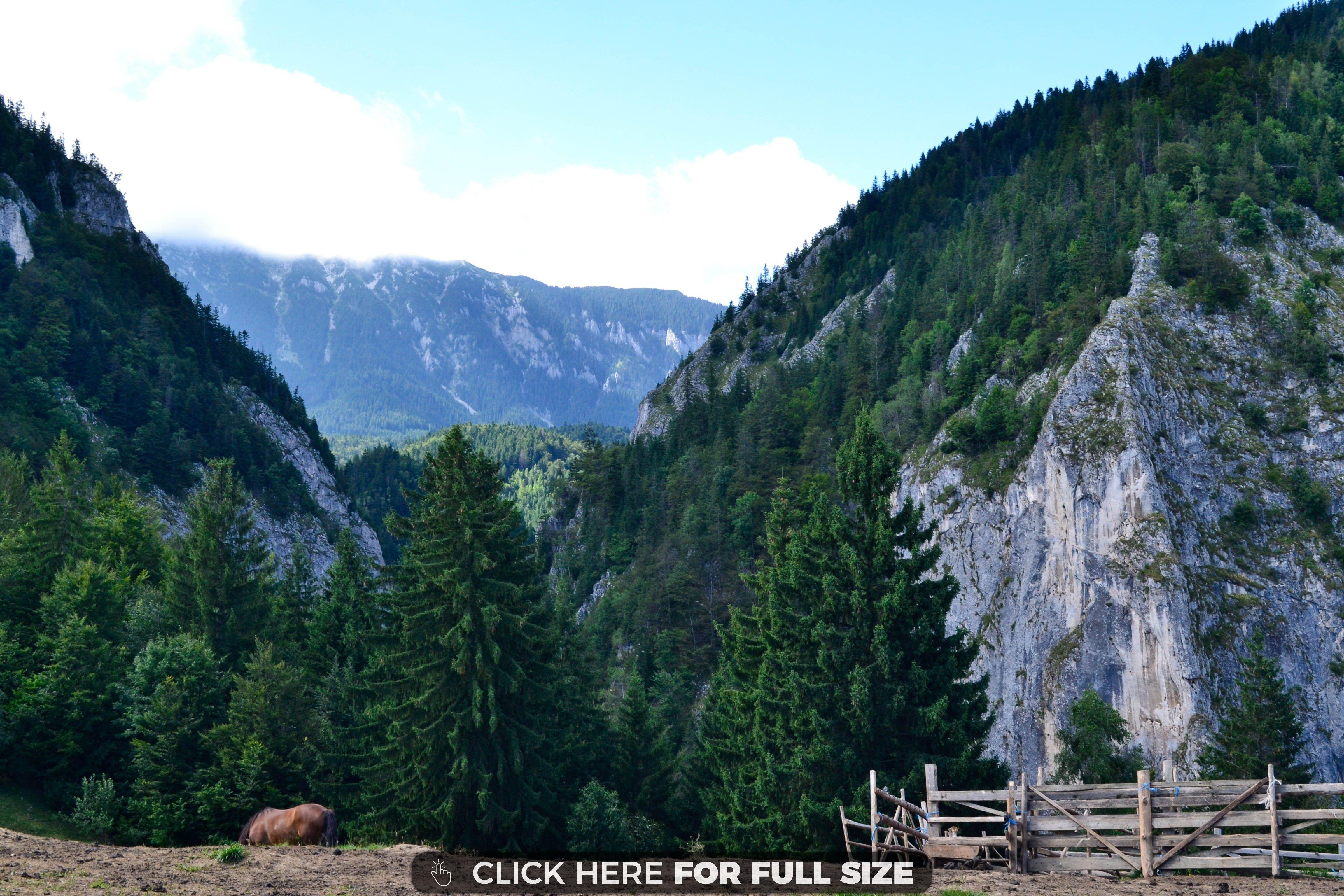 Beautiful Mountains Of Romania 4k Wallpaper