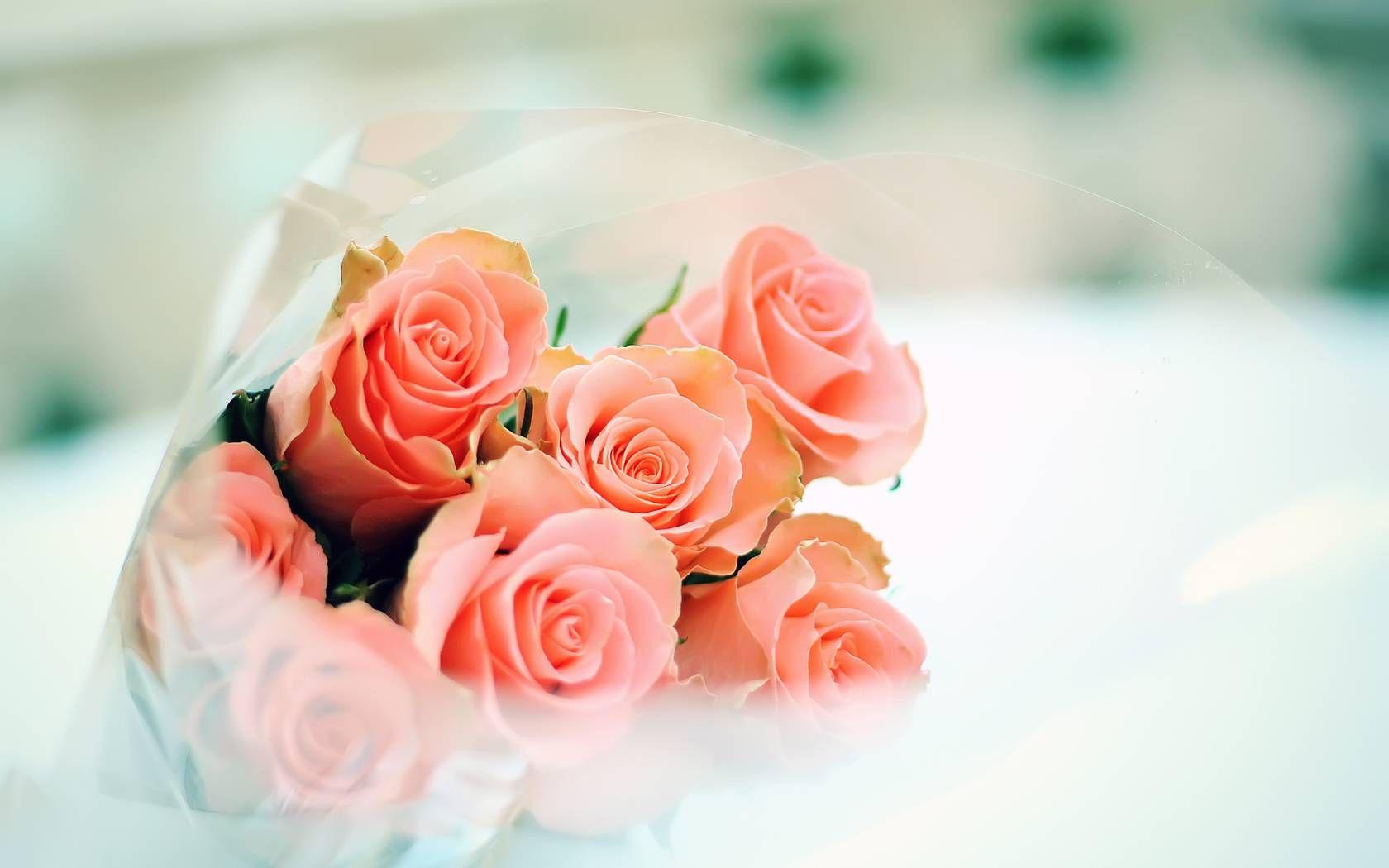 cute little flowers wallpaper - photo #49