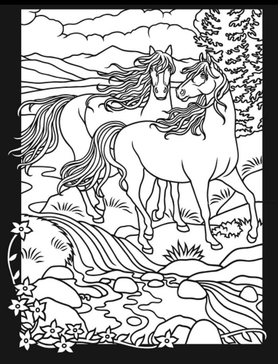 - Horses 3 D Coloring Book Dover Publications Coloring (With Images