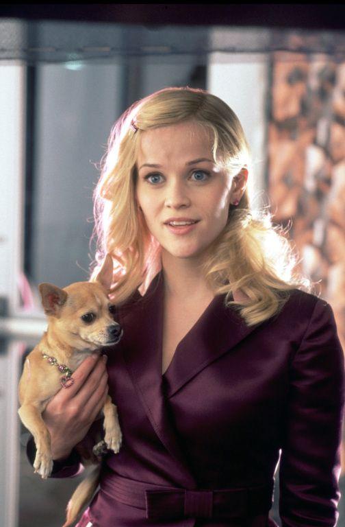 Kino bei CINEMA: Kinoprogramm, Filme, DVDs, Stars, Trailer und mehr |  cinema.de | Legally blonde, Legally blonde outfits, Legally blonde 2