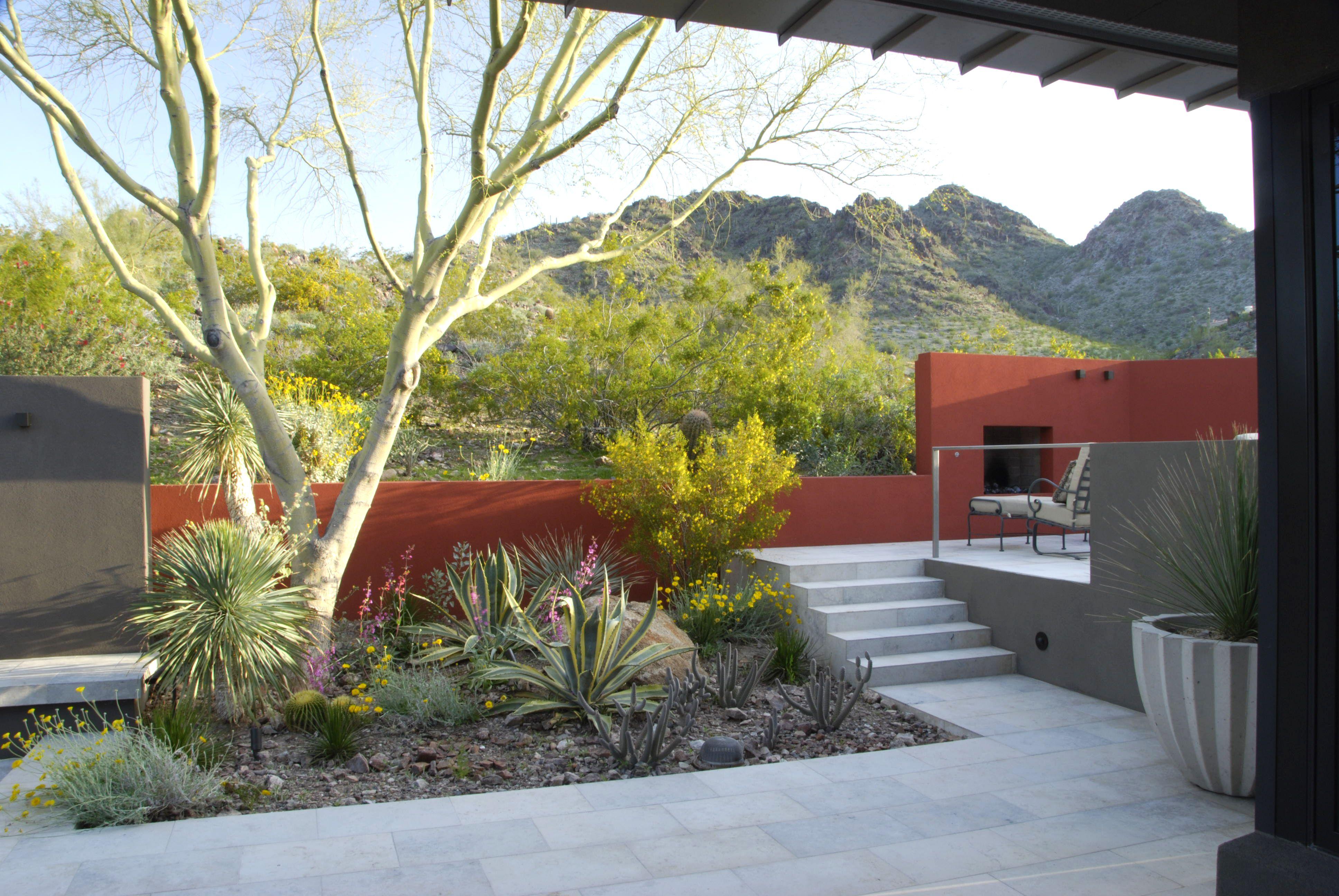 Steve Martino Landscape Architect / Ocotillo Drive Residence, Phoenix