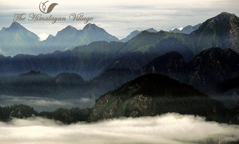 Some pictures are just enough they don't need a tag line !!! #photography #kasol #india the himalayan village resort
